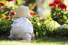 男婴在草爬行在庭院里在美好的春日 免版税库存图片