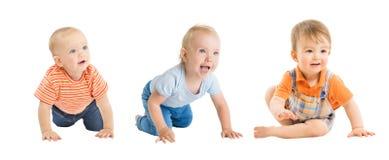 男婴,爬行的和坐的婴儿孩子小组,白色的小孩孩子 库存图片