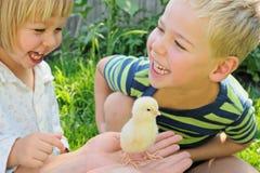 男孩、女孩和鸡 免版税库存照片