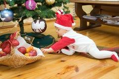 男孩下圣诞树 图库摄影