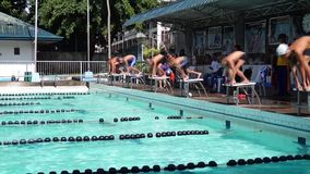 男孩严谨地在接踵而来的运动游泳竞赛的适当的体育潜水被训练 活动公共 股票录像
