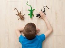 男孩使用与玩具的-蜥蜴,恐龙,鳄鱼 免版税库存照片
