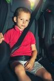 男孩到使用安全带的汽车里保护 免版税图库摄影