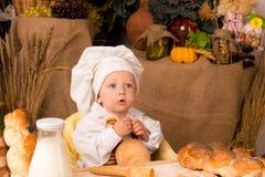 男孩厨师服装一点 免版税图库摄影
