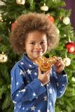 男孩吃前结构树年轻人的圣诞节曲奇&# 免版税库存图片