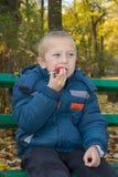 男孩吃秋天的画象 库存图片