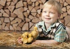 男孩和三只小的黄色鸭子 图库摄影