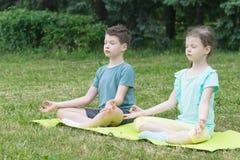 男孩和女孩在一个绿色地毯的莲花坐坐在公园 免版税库存图片