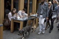 男孩和女孩饮用的咖啡在一个室外咖啡馆的一张桌上 与狗的人通行证 库存图片