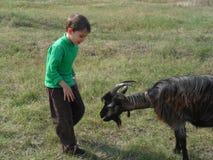 男孩和山羊 图库摄影