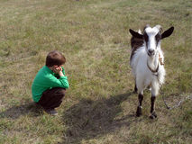 男孩和山羊 免版税库存照片
