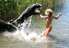 男孩和狗使用 免版税库存图片