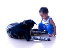 男孩和狗 库存图片
