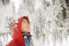 男孩和积雪的树 免版税库存照片