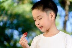 男孩和草莓 免版税库存图片