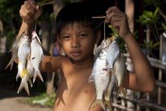 男孩和鱼 库存照片