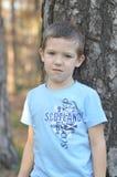 男孩和结构树 库存照片