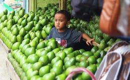 男孩和他的鲕梨 免版税图库摄影