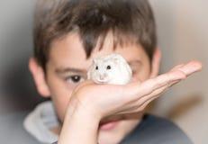 男孩和他的仓鼠 免版税库存图片