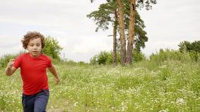 男孩和girld充当抓住在花草甸在暑假 股票视频