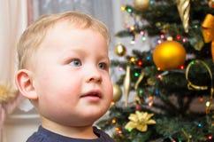 男孩和xmas树 免版税库存照片