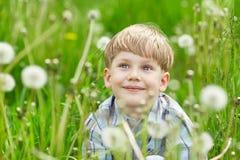年轻男孩在一个草甸用蒲公英 图库摄影