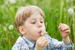 年轻男孩在一个草甸用蒲公英 免版税库存照片