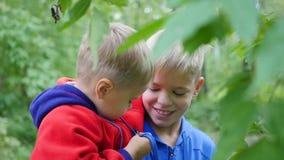 男孩在他的胳膊拥抱他的弟弟并且拿着他 在公园空白夏天的结构树的云彩 股票视频
