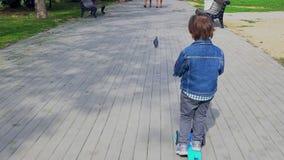 男孩在公园乘坐一辆滑行车 股票视频