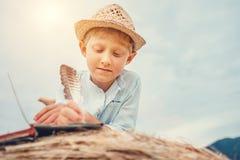 男孩在干草卷读说谎一本的书 免版税库存照片