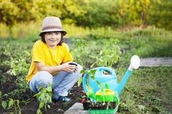 男孩在庭院在种植前敬佩植物 绿色新芽对于儿童手 免版税图库摄影