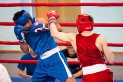 男孩在拳击竞争 免版税库存图片