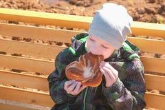 男孩在春天坐一条长凳在公园并且吃着一个小圆面包用糖 正面图 免版税库存图片