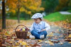 男孩在有果子叶子和篮子的一个公园  免版税库存图片