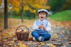 男孩在有果子叶子和篮子的一个公园  免版税库存照片