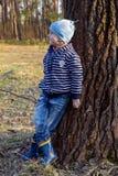 男孩在森林走 免版税库存图片