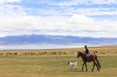 男孩在歌曲Kul湖骑马在吉尔吉斯斯坦 库存照片