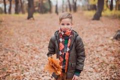 男孩在秋天公园站立 他拿着黄色叶子和神色花束入照相机 库存图片