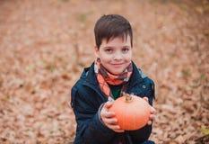 男孩在秋天公园站立 他拿着黄色叶子和神色花束入照相机 免版税库存照片