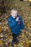 男孩在秋天森林里吃 免版税库存图片