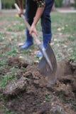 男孩在秋天的公园开掘地面 工作的过程 免版税库存照片