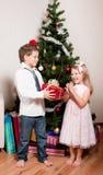 男孩在结构树附近的冷杉女孩 免版税库存照片