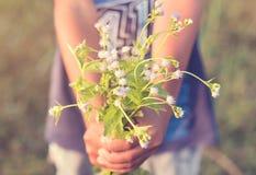 男孩在绿色草甸递拿着一朵花 库存照片
