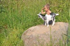 男孩在远处看,播放幼小山羊 免版税库存照片