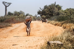 男孩在马达加斯加 库存照片