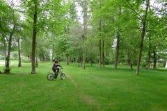 男孩在绿色树丛的骑马自行车 库存照片