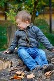 男孩坐一个树桩在秋天 免版税库存照片