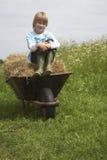 男孩坐在独轮车的干草在领域 免版税图库摄影