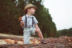 男孩坐日志 免版税图库摄影