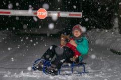 男孩坐雪撬,收留狗 免版税库存图片